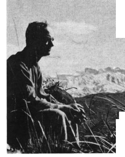 Friedrich Ritter